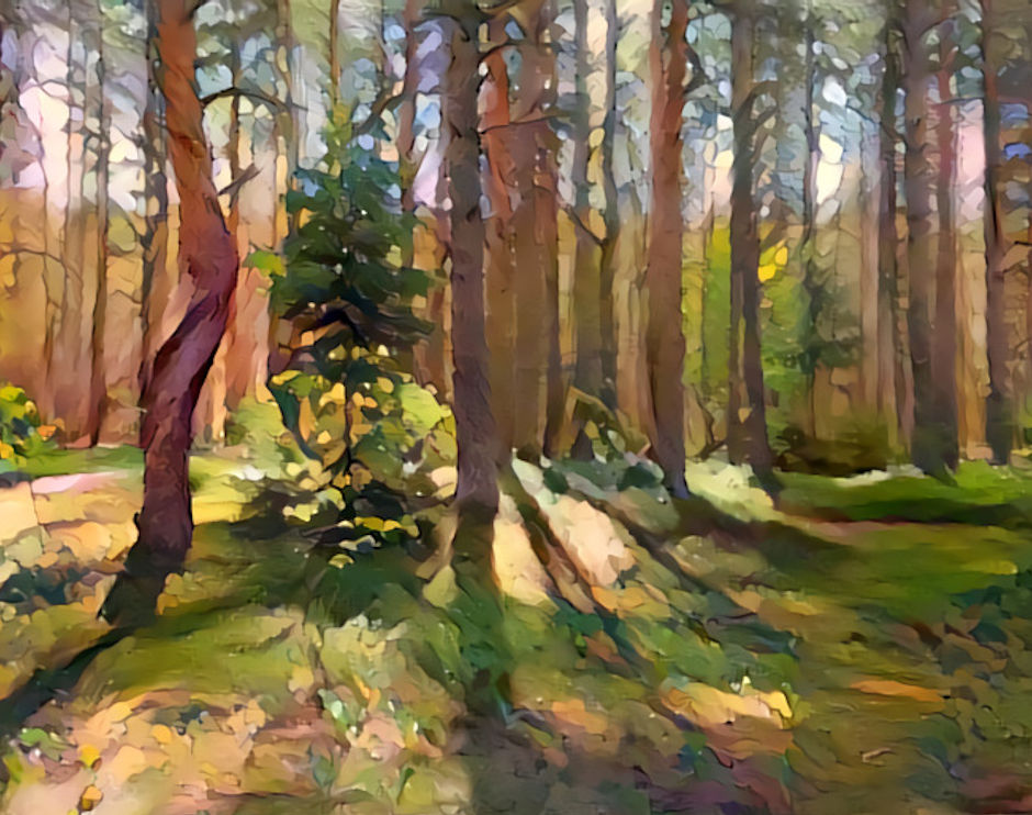 Estonian pine forest x local artist