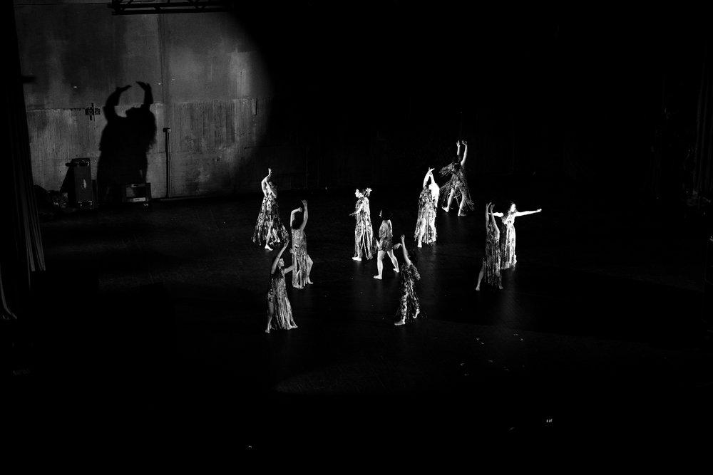 Dance and Shadows.jpg