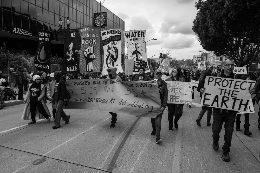 Earth Protest-2.jpg