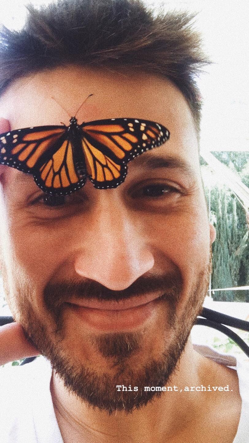 butterflies-and-men[1].jpeg
