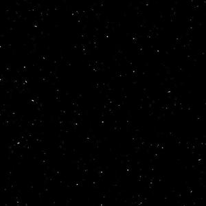 Perna Black P004 *