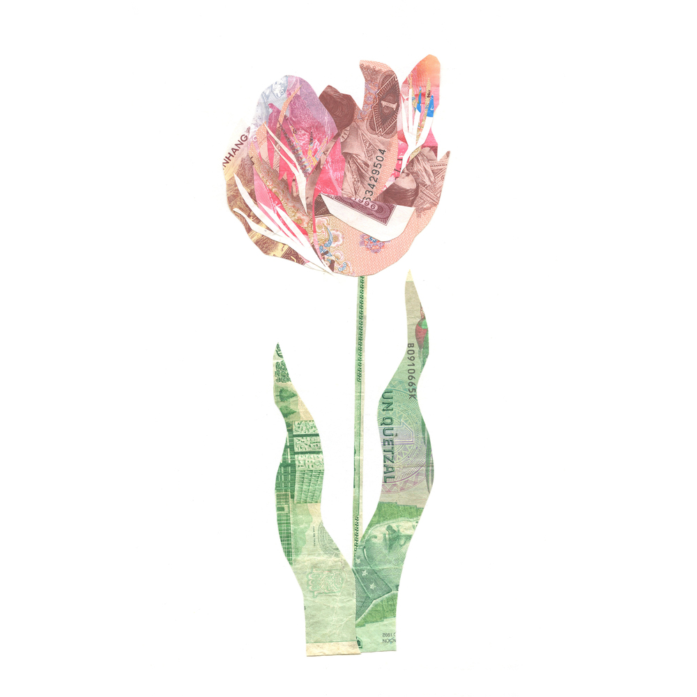 Ca$h Money Flower
