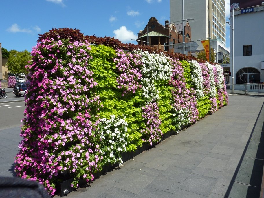 vertical garden greenwall double sided planted with florals