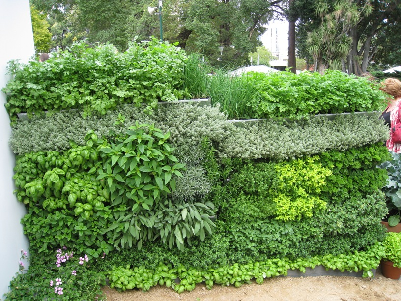 vertical garden DIY kit