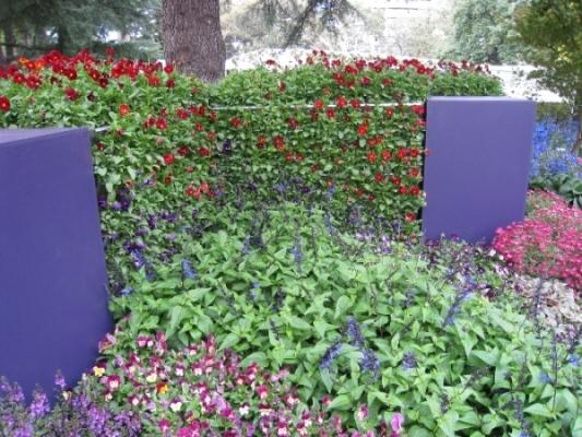 vertical garden DIY kit- Mobiwall
