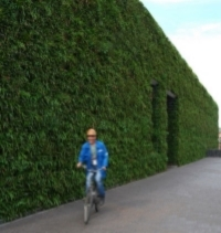 Greenwall 272 sq. m - photo courtesy Garsy