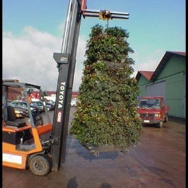 vertical garden- tower on crane