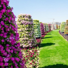 vertical garden towers in Dubai