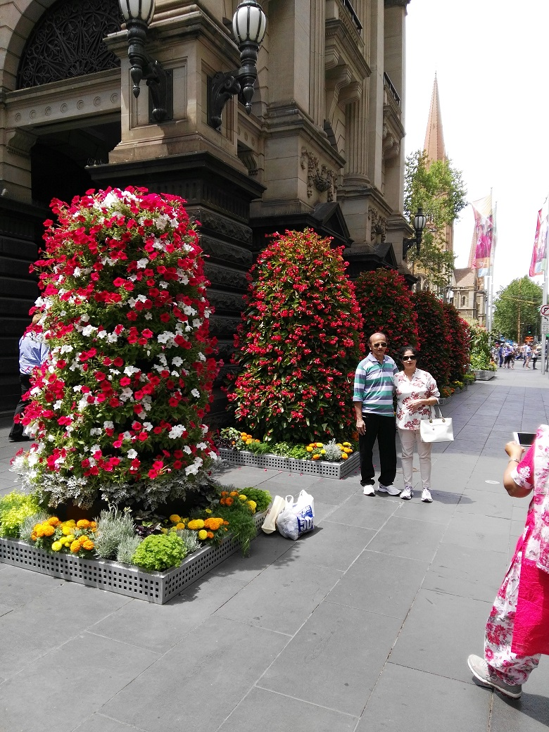 Vertical Flower Towers still popular outside Melbourne Town Hall