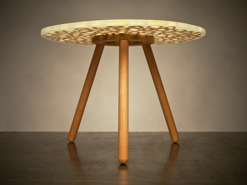 Cow bone table-0633.jpg