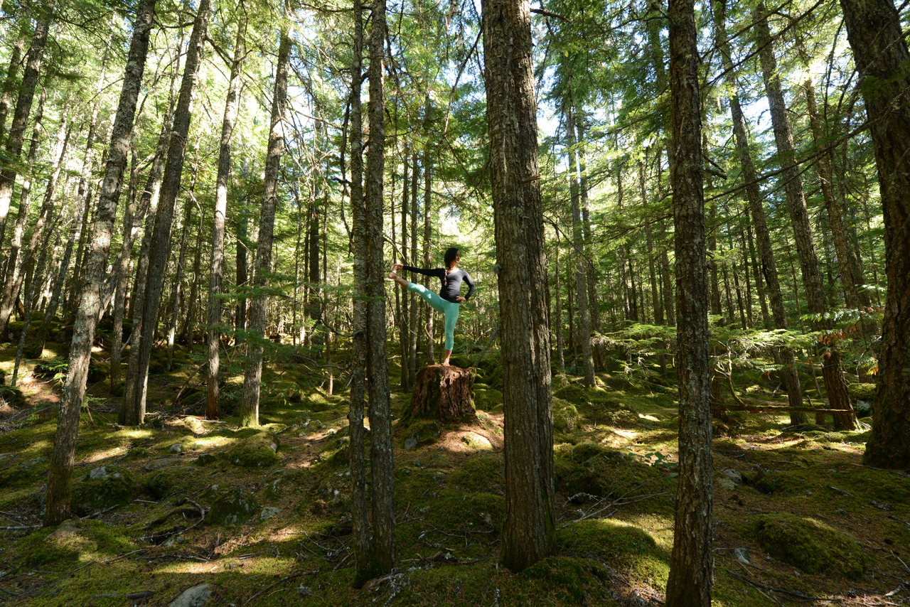 Yoga in the Forest, incredibly grounding   Utthita Hasta Padangusthasana