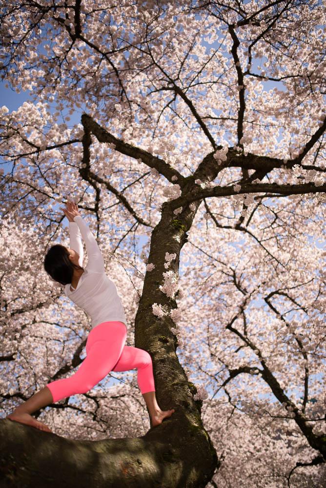 Spring has Sprung!    http://www.facebook.com/CamilliaLeeYoga
