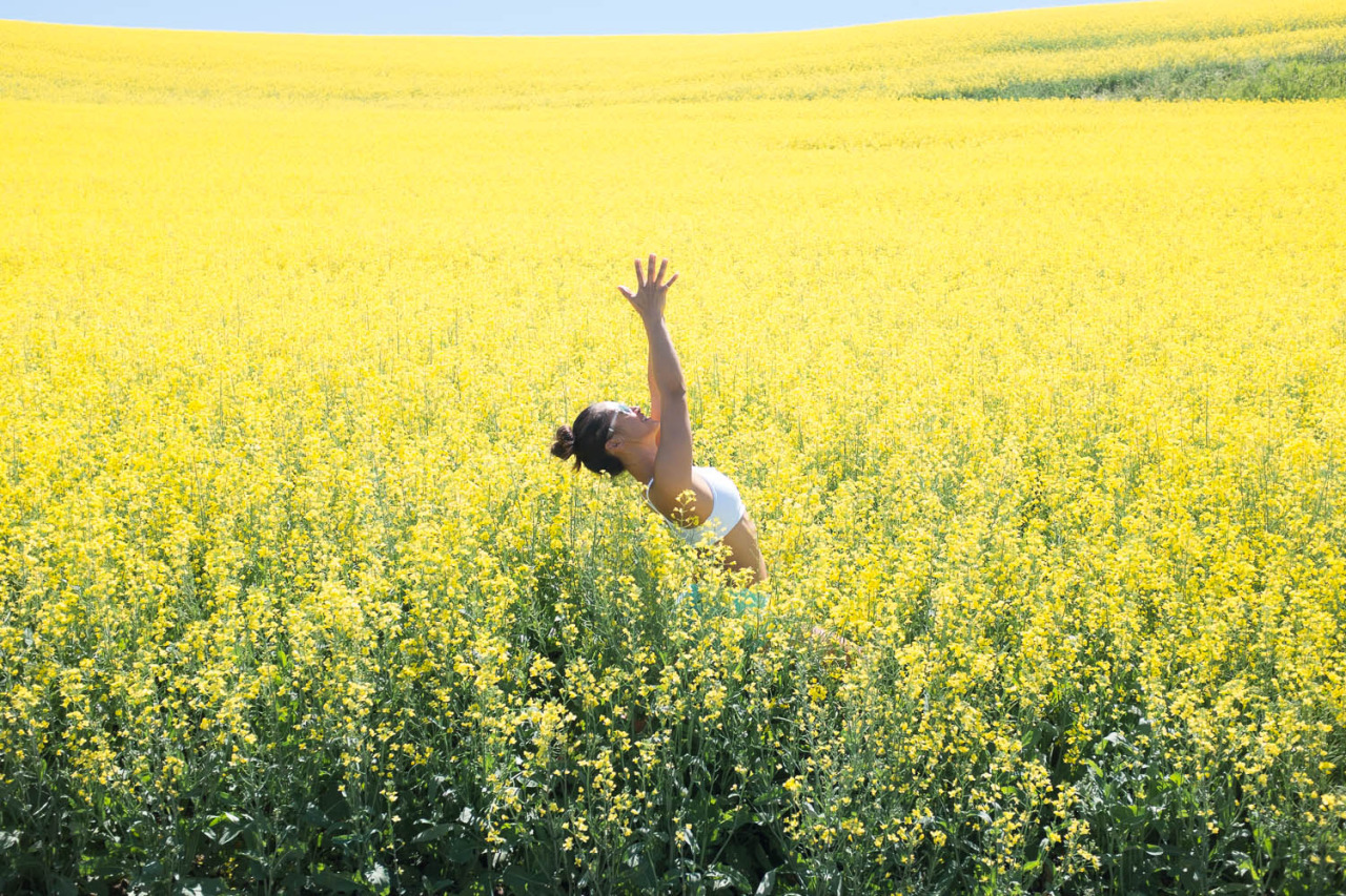 Field of Dreams   Virabhadrasana - Warrior I    http://www.facebook.com/CamilliaLeeYoga