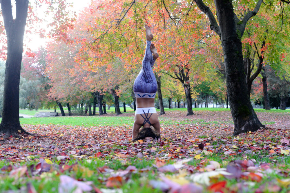 Crisp air, fallen leaves and warm tea #hellonovember   Fall Leaves | Trout Lake | Vancouver | British Columbia | Canada Leggings |  Heidi the Artist    Instagram  |  Facebook  |  Twitter