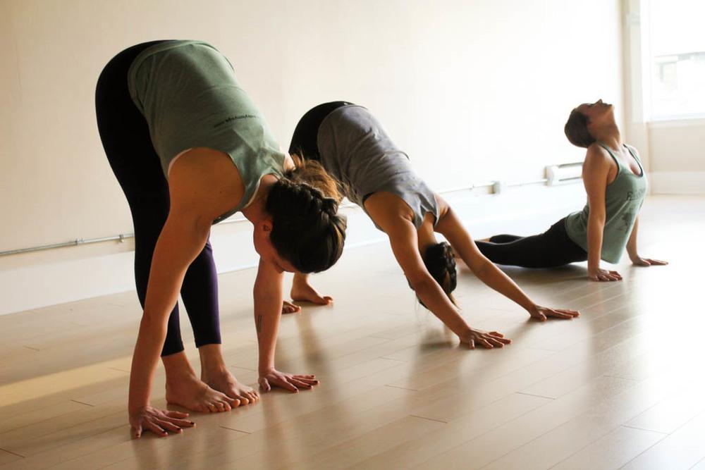 Babylon Yoga | Vancouver Yoga | Canada  Photographed |  Joy Quillian