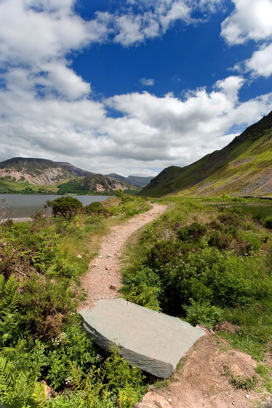Towards-fishermans-cragg-on-Ennerdale.jpg