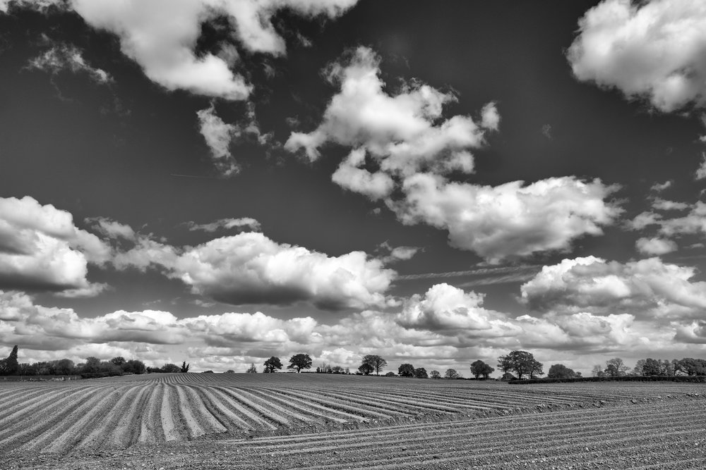 Fields and Sky. Although shot in colour I liked the Black and White conversion.