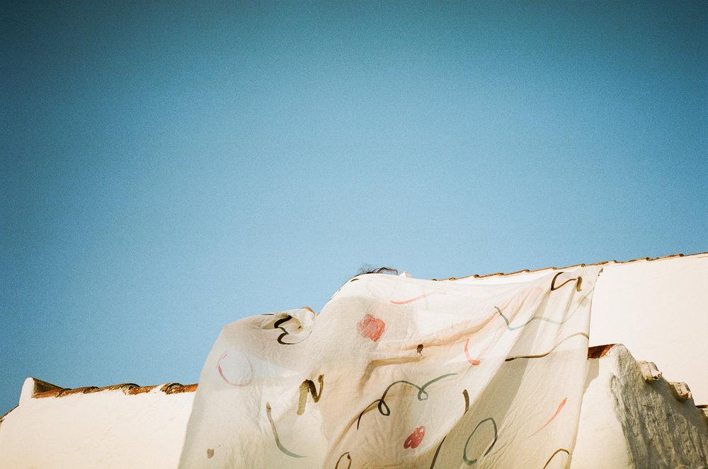 photo by Cecilia Renard