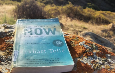 Courtesy of @m1nd_the_gap via instagram     If Not Now, When?  - ECKHART TOLLE