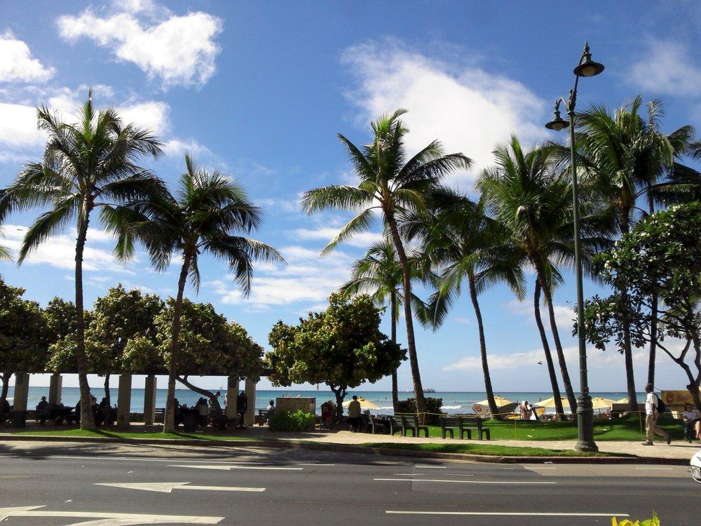하와이에 도착한 여행자들이 접하는 흔하디 흔한 첫 인상