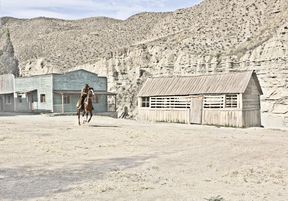 Horsey Horsey.jpg