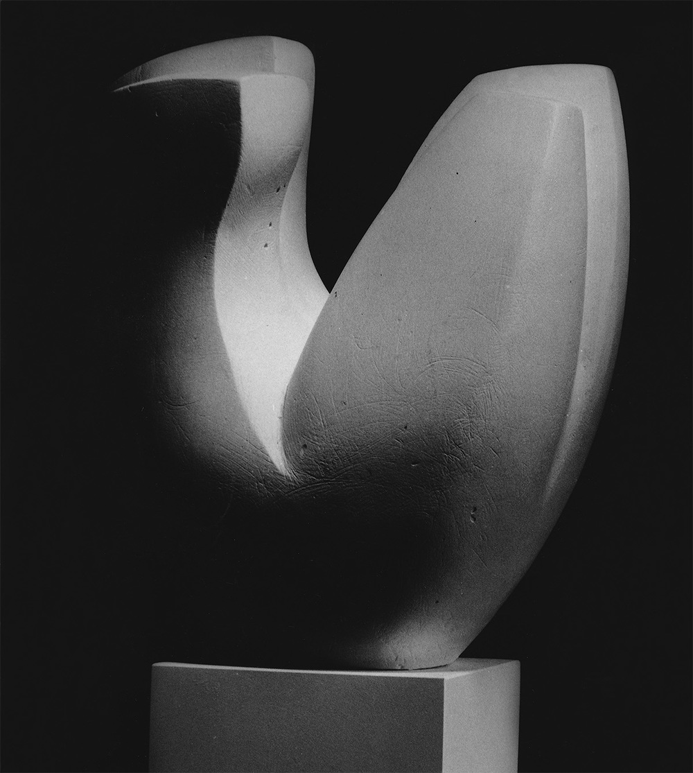 Model version of the Torso - Flower