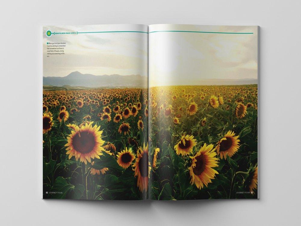 MINDF-Sunflowers-(44).jpg