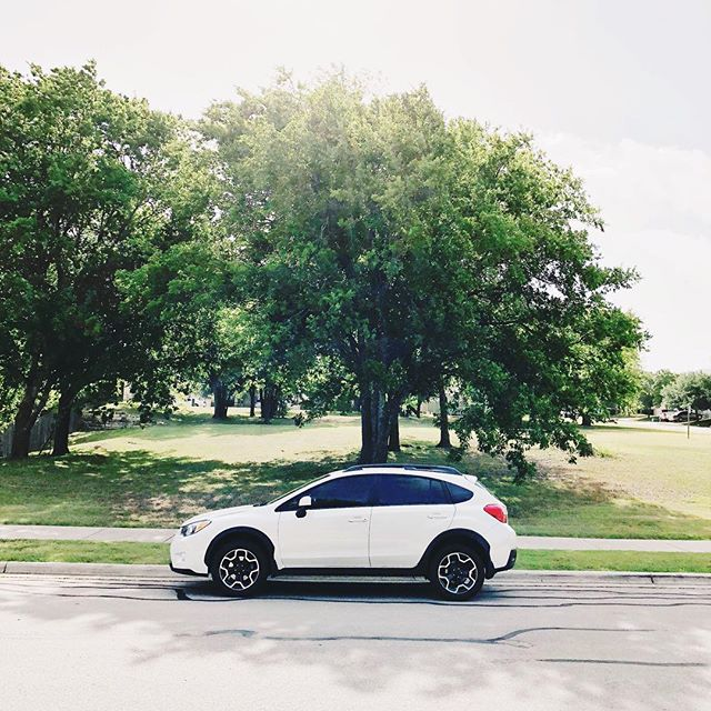 How To Feel Like You Still Live in Denver (Despite 110 Degree Temperatures and Cedar Trees All Around You): • 1. Buy a Subaru. • (After 18 months on foot/bike, we have a car again!)