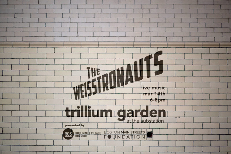 theweisstronauts.jpg