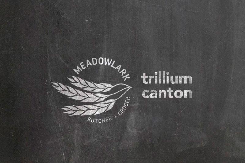 meadowlarkcanton (5).jpg