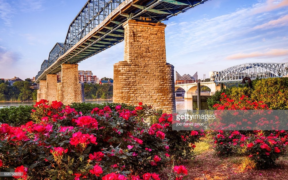 Under the Walnut Street Bridge, Chattanooga, Tennessee, America