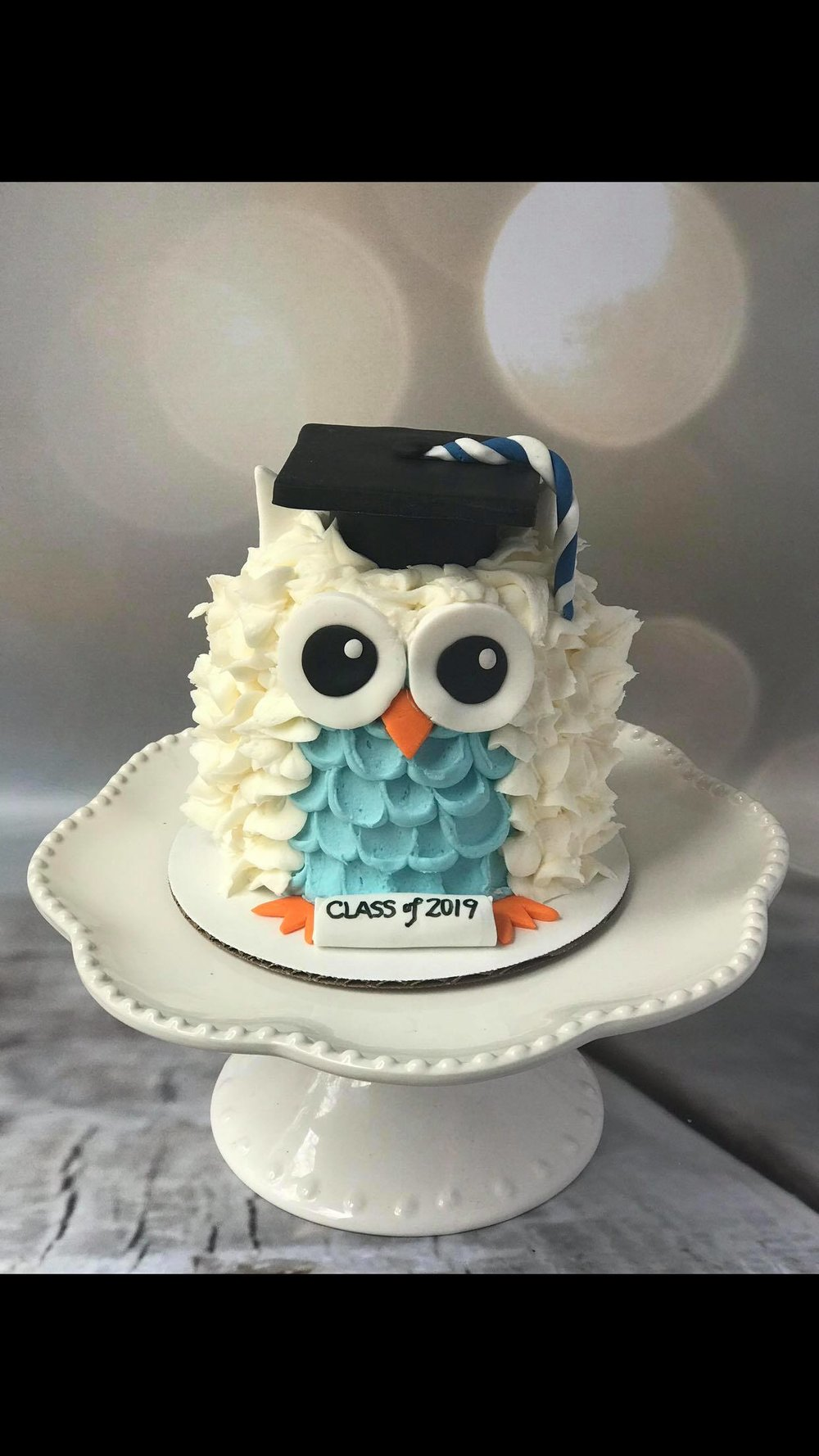 Owl Graduate Mini Cake - $30This adorable mini cake feeds 4-5 people and is a fun little celebration cake for any graduate!!!Available in chocolate, vanilla, funfetti or lemon