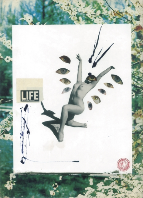 Life, Collage print on paper, 42x29.7cm