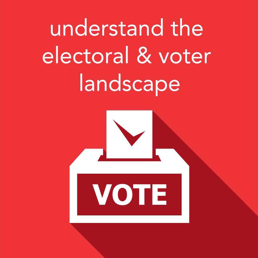 Voter Landscape