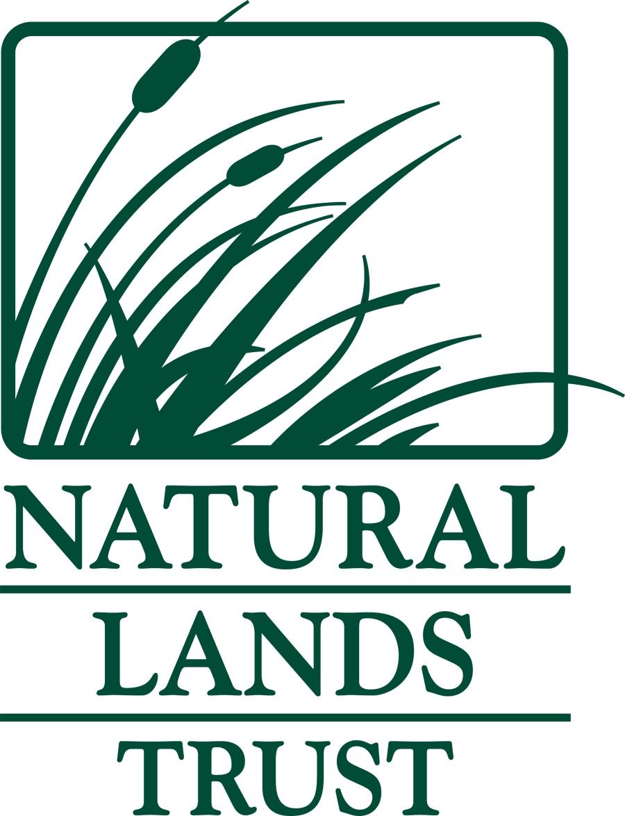 NLT Logo Solid GREEN.JPG