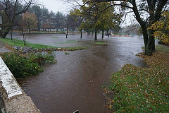 Swift Park Flooding
