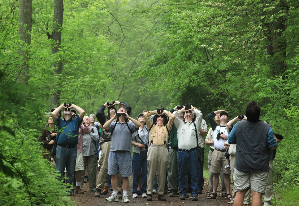 Birdwatching in the White Clay Creek Preserve. © Rick Darke