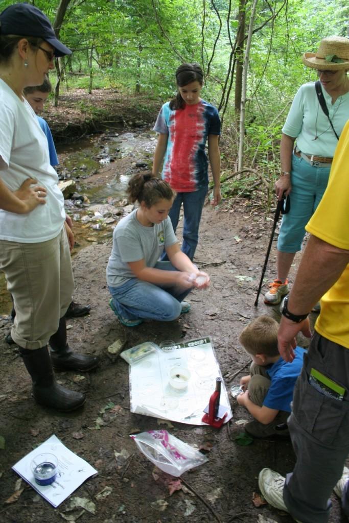 creek life study Goddard Park 2013