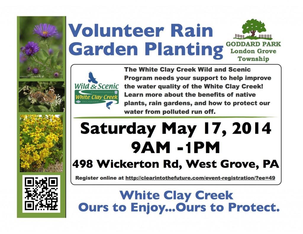 volunteer rain garden planting