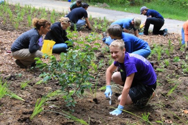 volunteers 166KB