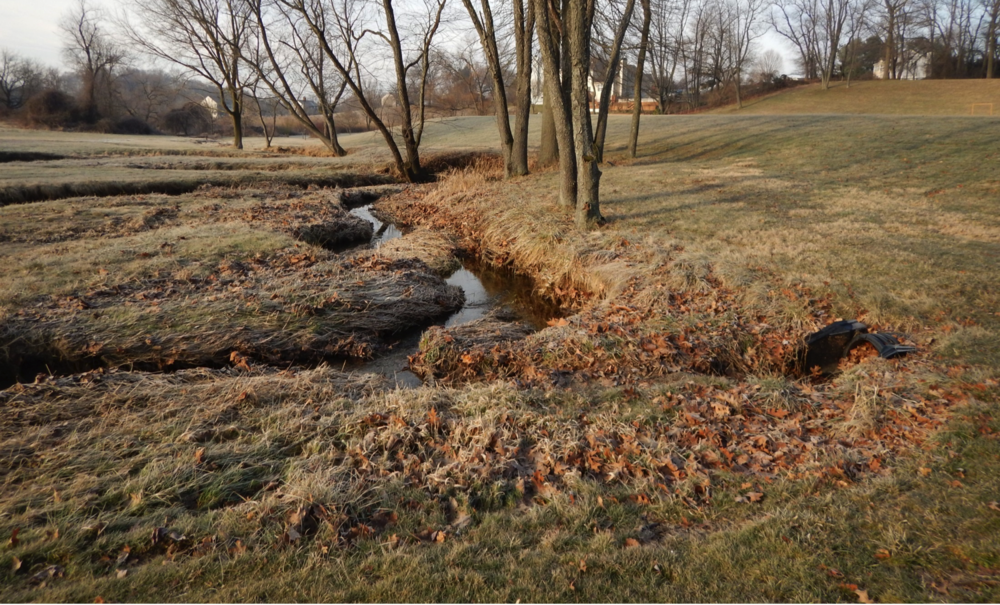Unstable and eroding stream bank mowed up to the edge of the bank at New Garden Park © LandStudies