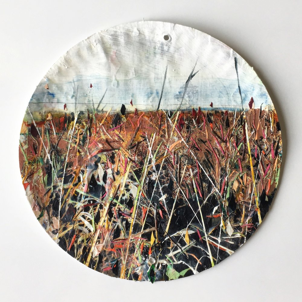 Untitled Field