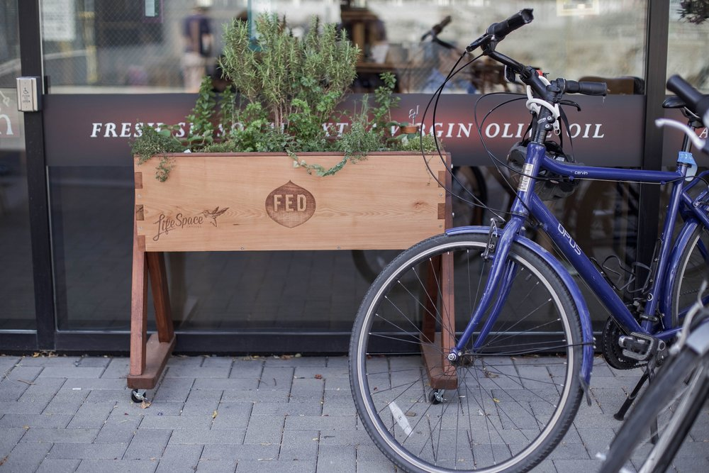 You'll see lots of these Food Eco District (FED) planters around town this year.