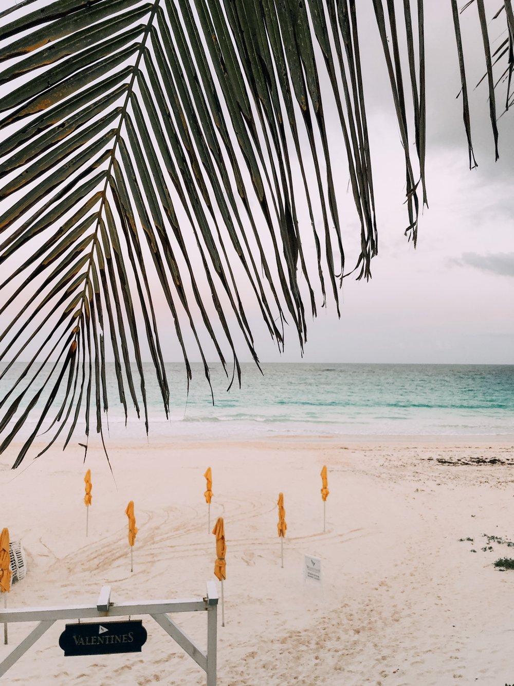 Valentine's Resort Harbour Island Pink Sand Beach.jpg