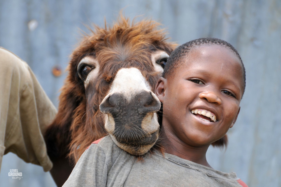tanzania boy and donkey