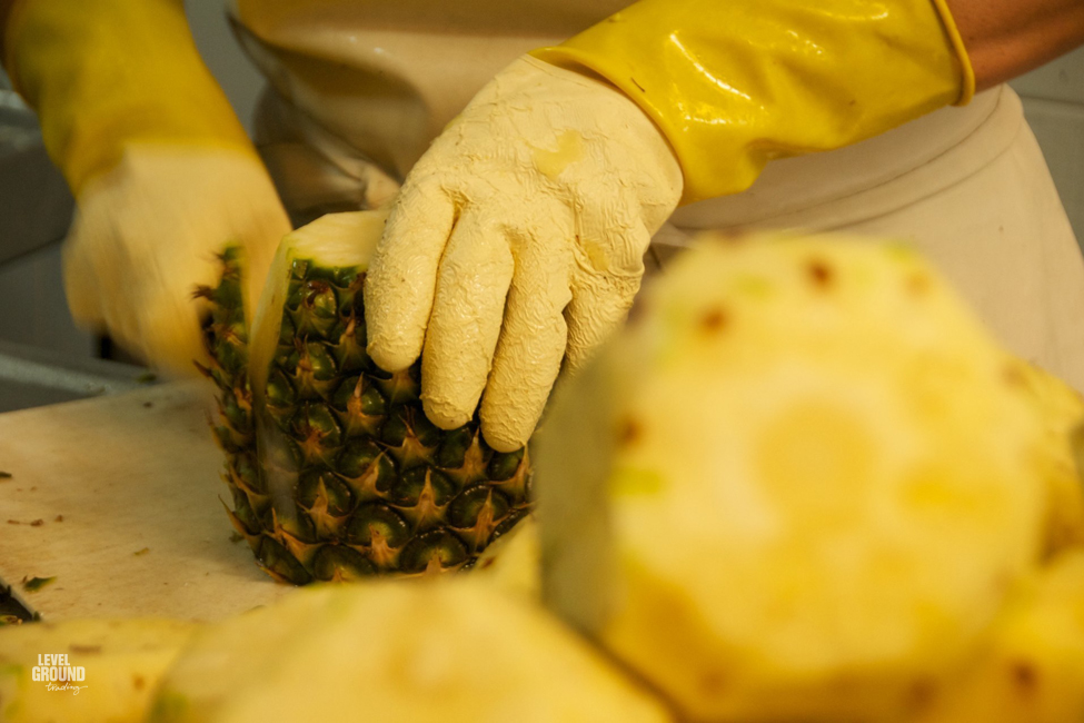 Cutting pineapple in colombia