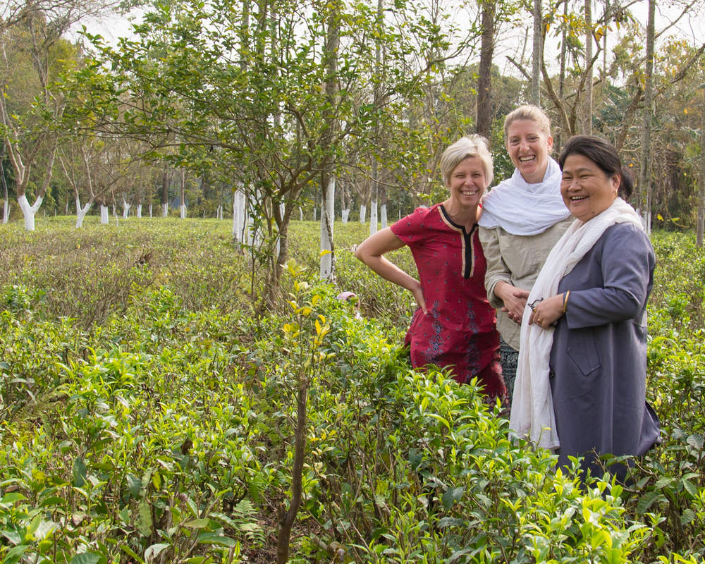 Laurie, Alicia and tea grower in assam