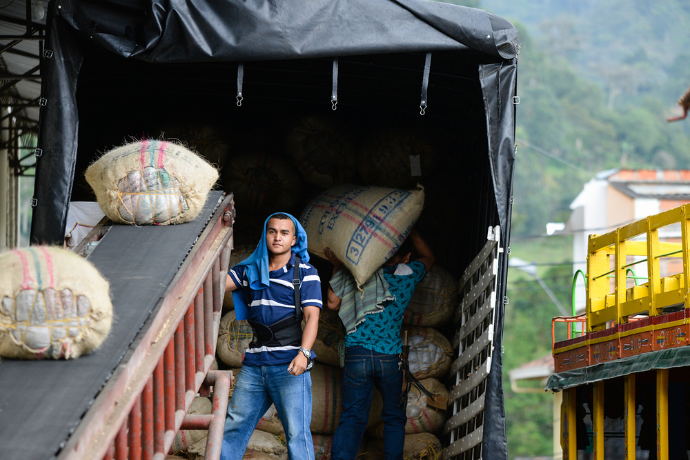 loading colombian coffee sacks