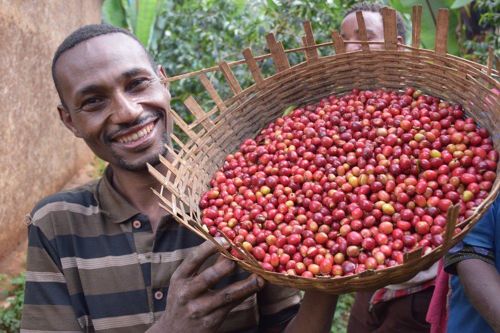 Tanzanian Coffee Farmer