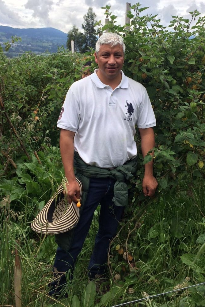 Meet Albeiro. Golden Berry Farmer